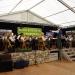 Musikfest 2016 Vatertag 001