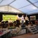 Musikfest 2016 Vlado Kumpan 047
