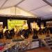 Musikfest 2016 Vlado Kumpan 069